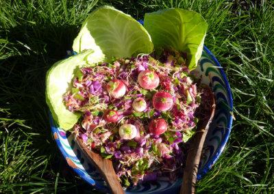 Repas crus et bio cuisinés sur place pour une véritable détox lors de votre séjour