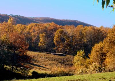 Le domaine de Manaska aux couleurs de l'automne